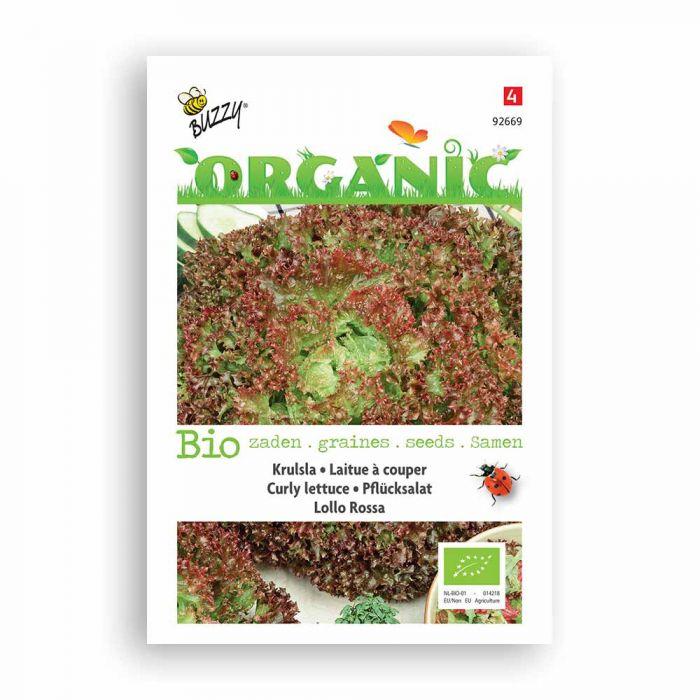 Buzzy® Organic Krulsla Lollo rossa (BIO)