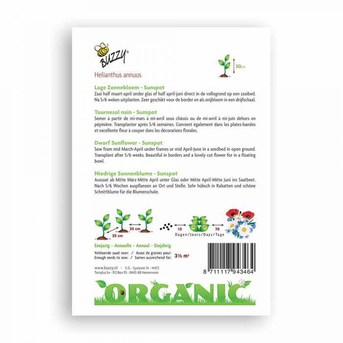 Buzzy® Organic Helianthus annuus Sunspot (BIO)