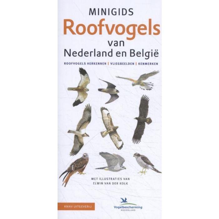 Minigids - Minigids Roofvogels van Nederland en België