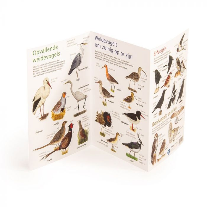Natuurpunt kijkkaart Weidevogels