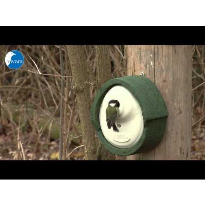 Nestkast Alicante WoodStone 32 mm Groen