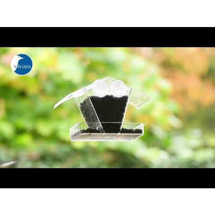 Zwarte Zonnebloempitten