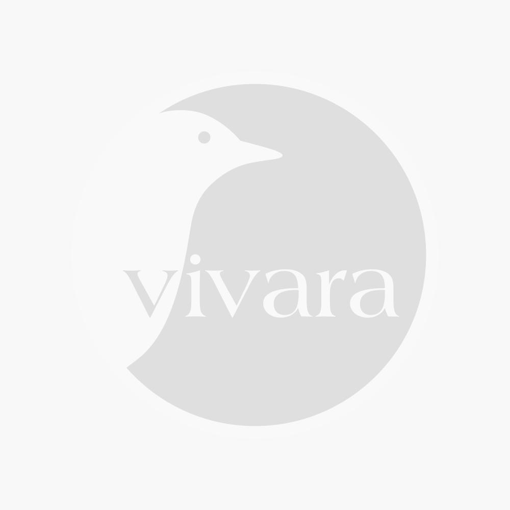 Vivara Schoonmaakborstel Ø 12 cm
