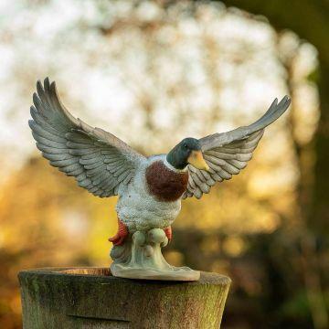 Vliegende eend