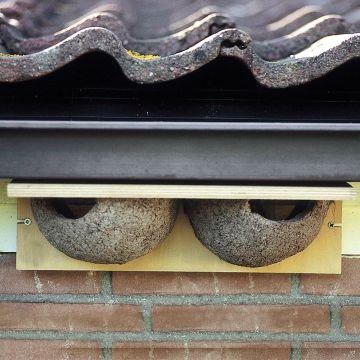 Kunstnest huiszwaluw dubbel