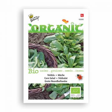 Buzzy® Organic Veldsla Grote Noordhollandse (BIO)