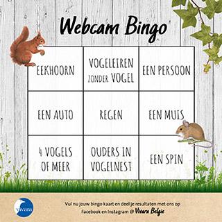 Webcam Bingo