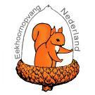 Eekhoornopvang Nederland, wat eet een eekhoorn