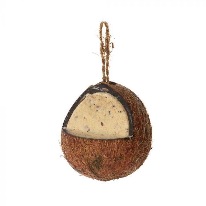Hele kokosnoot met meelwormen