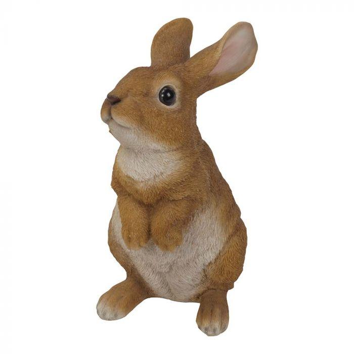 Staand konijn