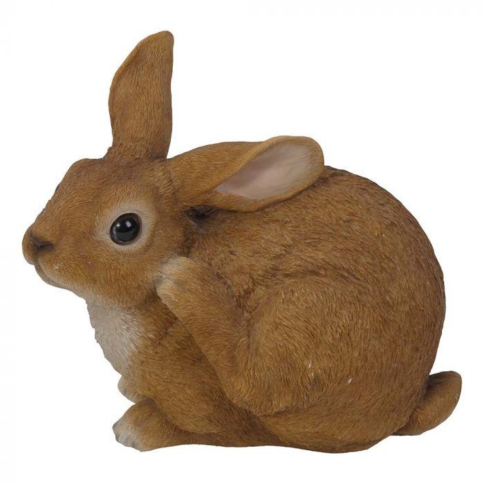 Zittend konijn