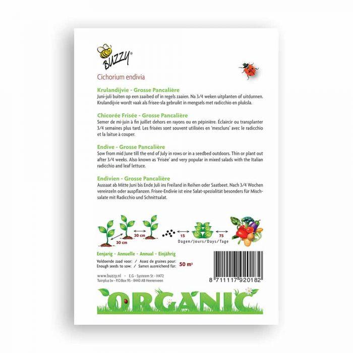 Buzzy® Organic Krulandijvie Pancalière (BIO)