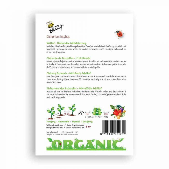 Buzzy® Organic Witlof Middelvroeg (BIO)