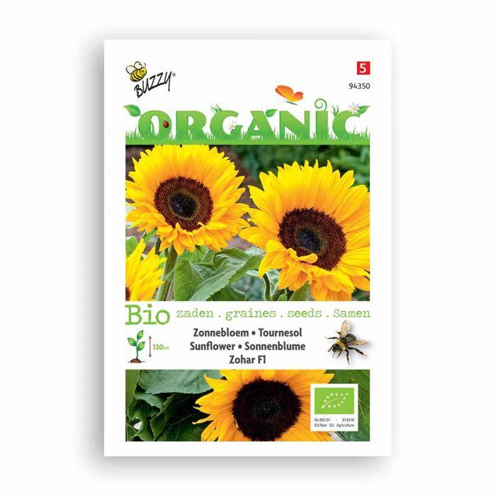 Buzzy® Organic Helianthus Zohar F1 (BIO)