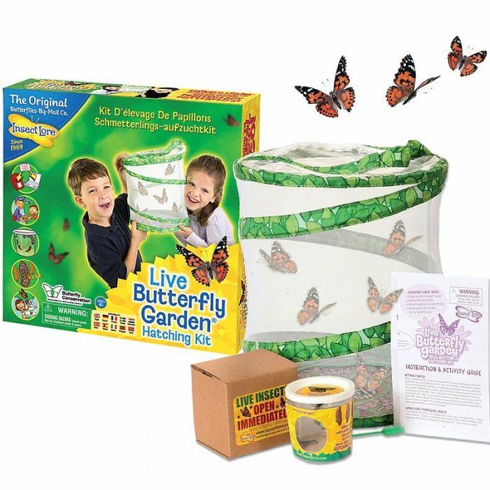 Levende vlindertuin