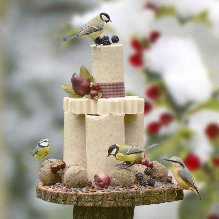 Vogeltaartpakket