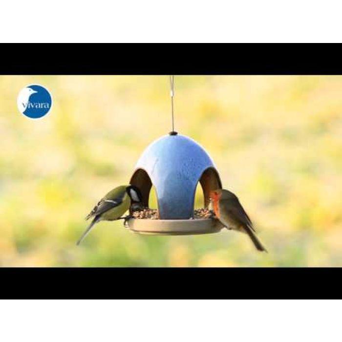 Mix voor kleine vogels