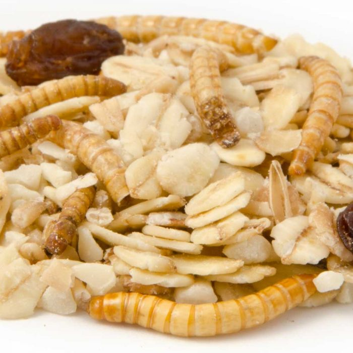Premium vetvoer met meelwormen