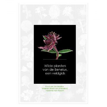 Wilde planten van de Benelux