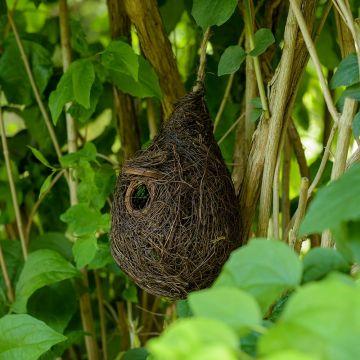 Lounge nest Funchal