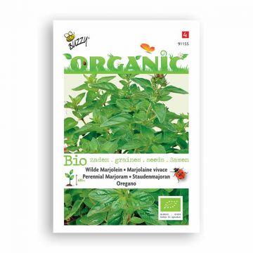 Buzzy® Organic Marjolein - Oregano (BIO)