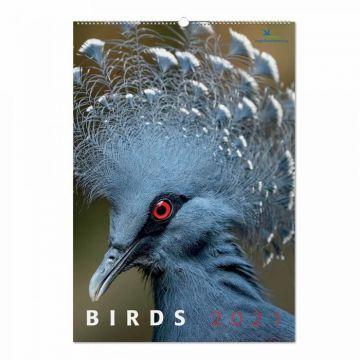 Birds kalender 2021