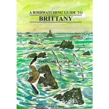 A Birdwatching Guide to Brittany