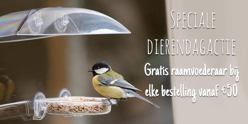 Homepage banner BENL Mobiel Dierendag